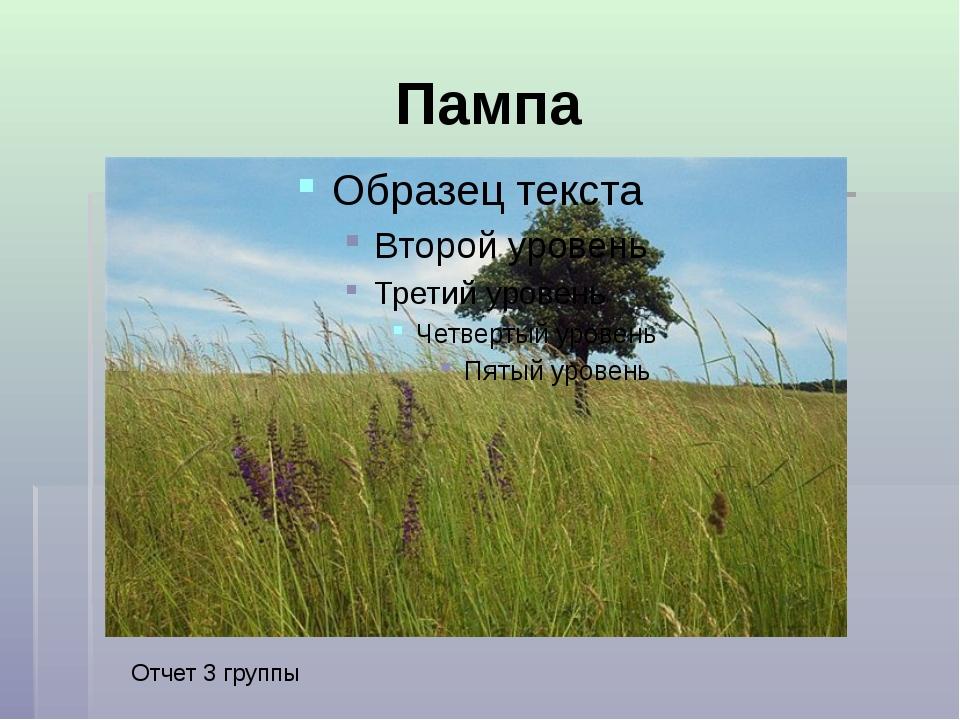 Пампа Отчет 3 группы