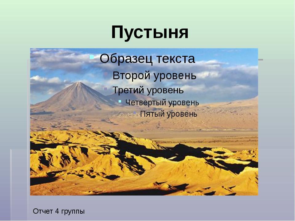 Пустыня Отчет 4 группы