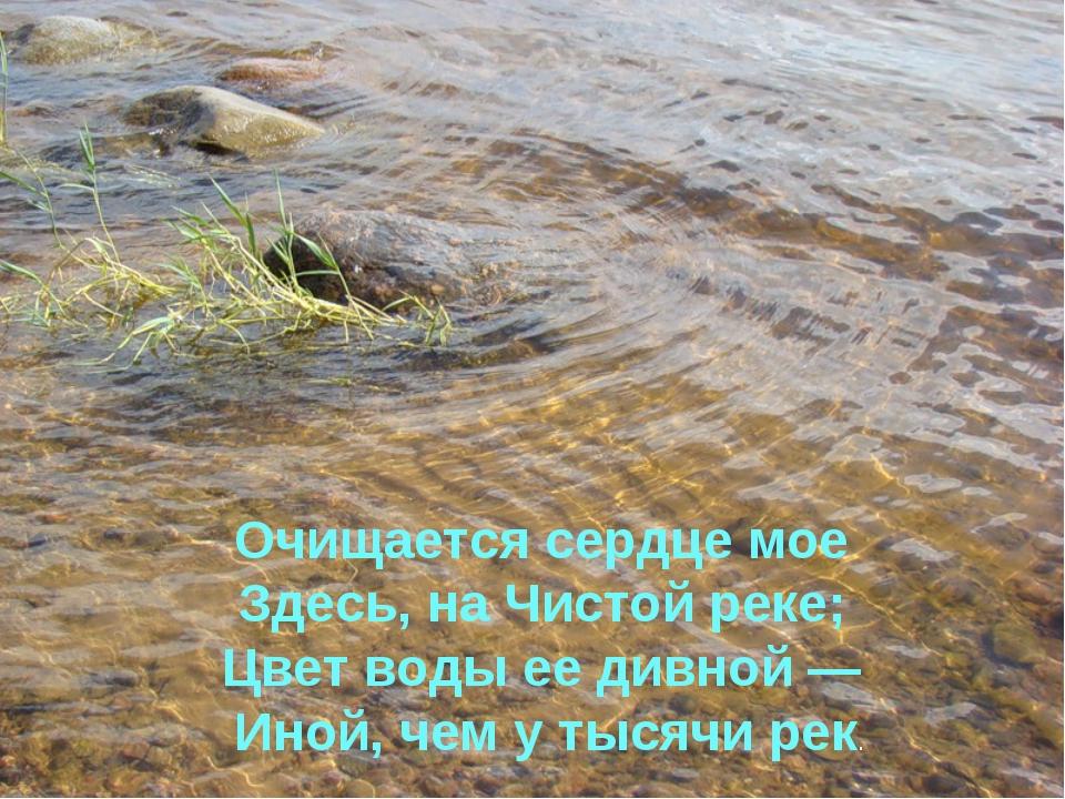 Очищается сердце мое Здесь, на Чистой реке; Цвет воды ее дивной — Иной, чем у...