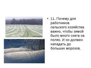 11. Почему для работников сельского хозяйства важно, чтобы зимой было много с