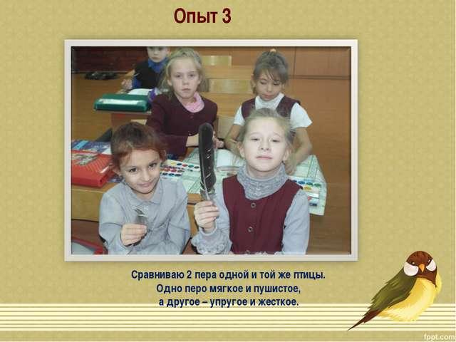 Опыт 3 Сравниваю 2 пера одной и той же птицы. Одно перо мягкое и пушистое, а...