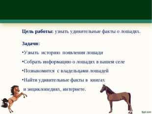 Цель работы: узнать удивительные факты о лошадях. Задачи: Узнать историю появ