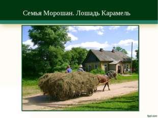 Семья Морошан. Лошадь Карамель