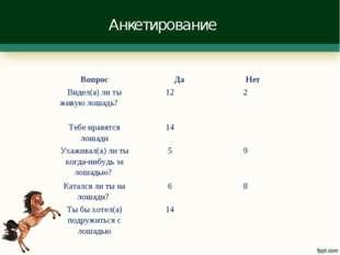 Анкетирование Вопрос Да  Нет Видел(а) ли ты живую лошадь? 122 Тебе нравя