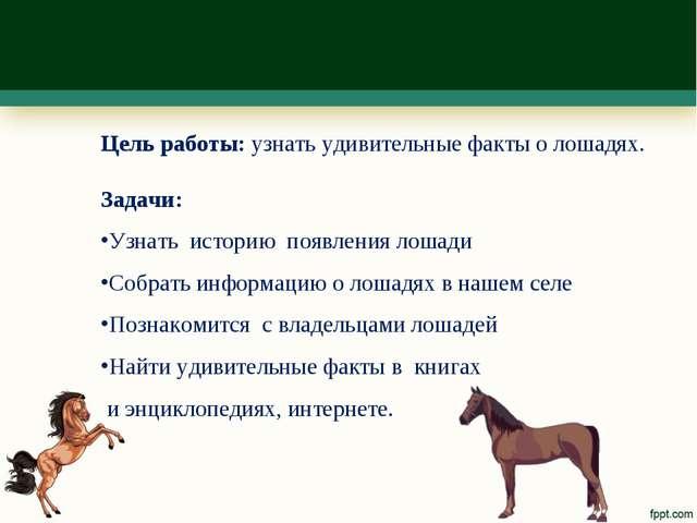 Цель работы: узнать удивительные факты о лошадях. Задачи: Узнать историю появ...