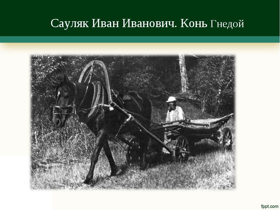 Сауляк Иван Иванович. Конь Гнедой