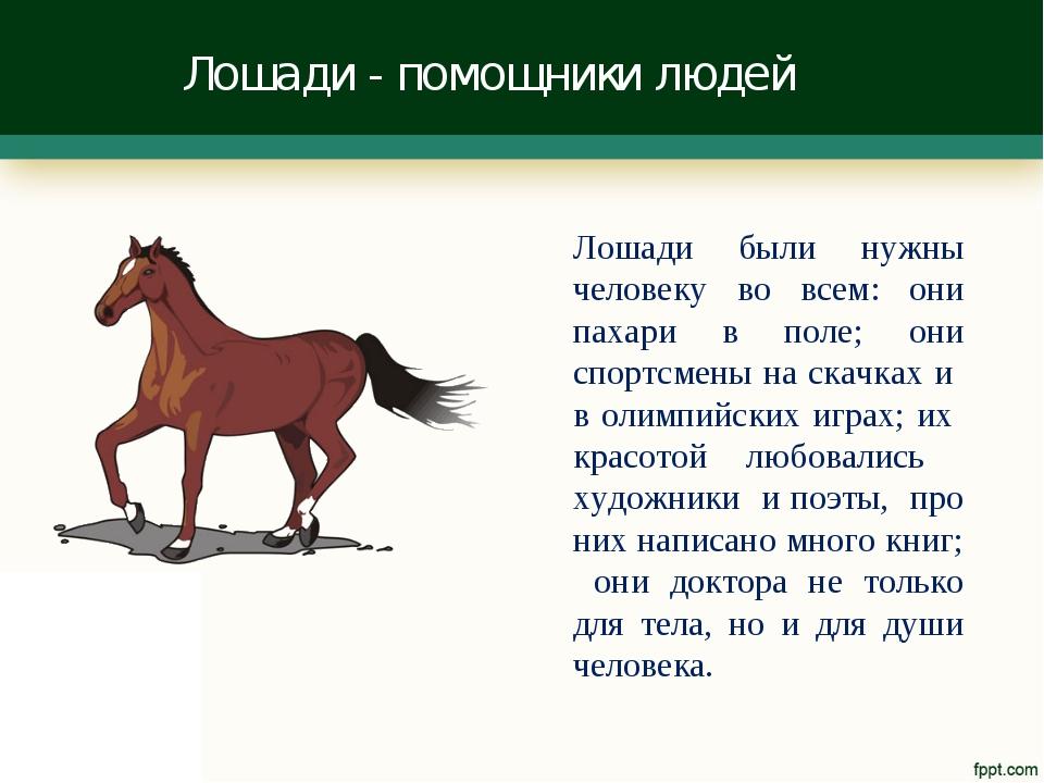 Лошади - помощники людей Лошади были нужны человеку во всем: они пахари в пол...