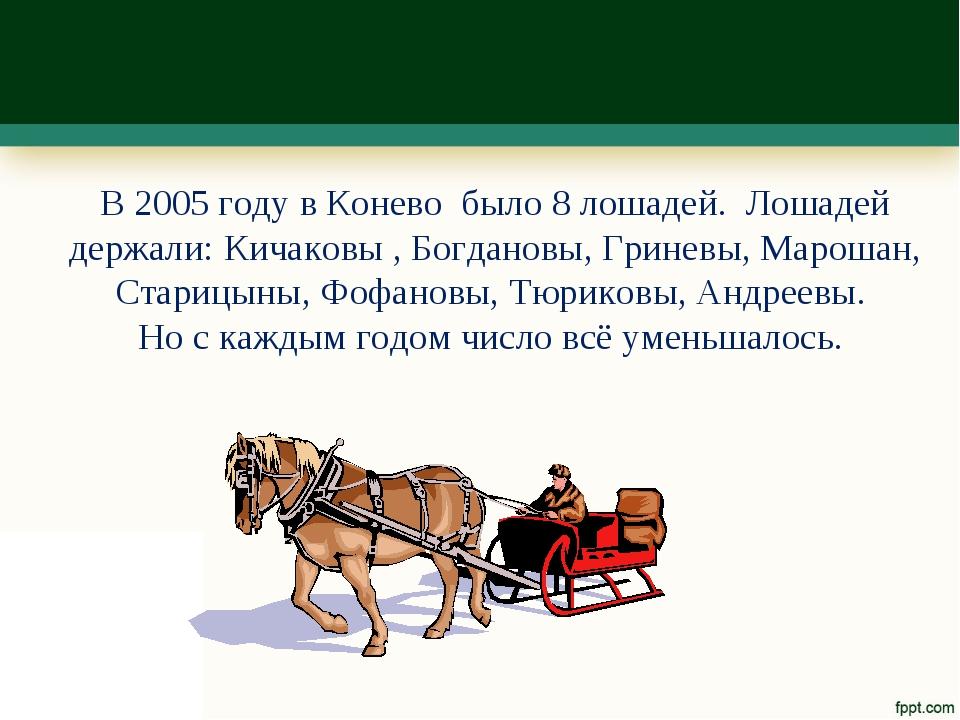 В 2005 году в Конево было 8 лошадей. Лошадей держали: Кичаковы , Богдановы, Г...