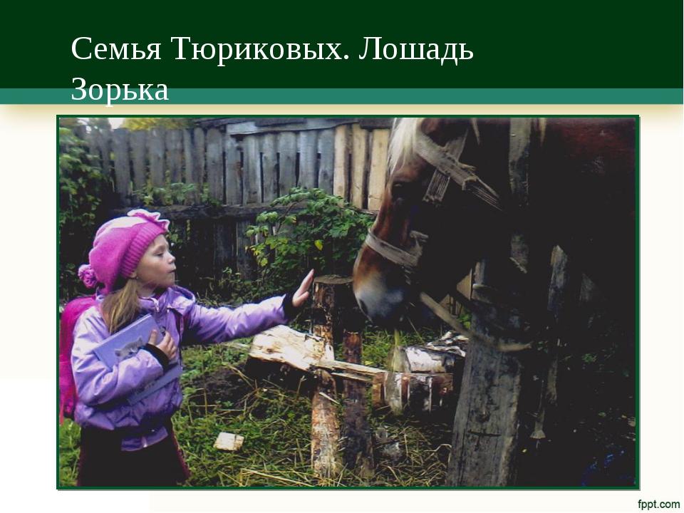 Семья Тюриковых. Лошадь Зорька