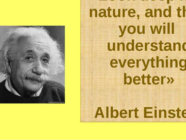 «Look deep into nature, and then you will understand everything better» Alber...