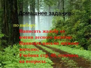 Домашнее задание по выбору: Написать жалобу от имени лесного жителя; Написать