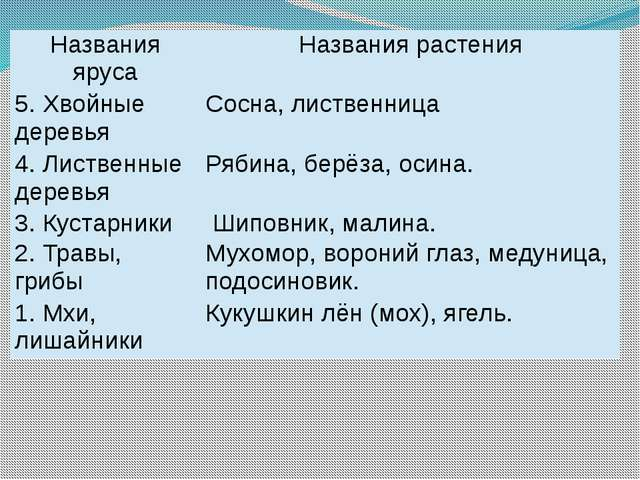 Названия яруса Названия растения 5. Хвойныедеревья Сосна, лиственница 4. Лист...