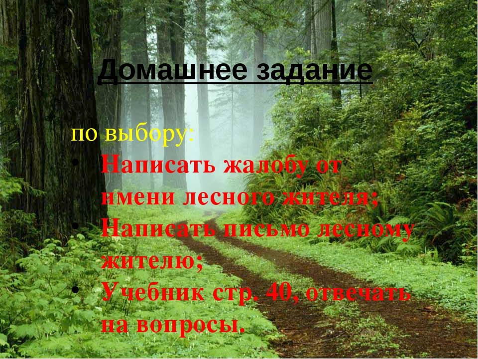 Домашнее задание по выбору: Написать жалобу от имени лесного жителя; Написать...