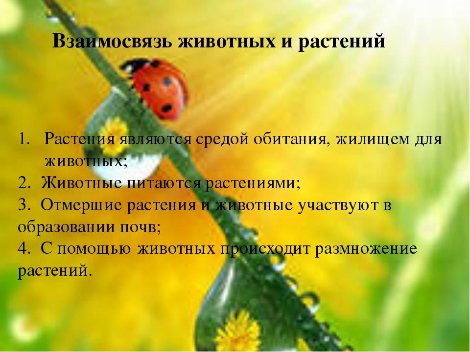 Растения являются средой обитания, жилищем для животных; 2. Животные питаются...