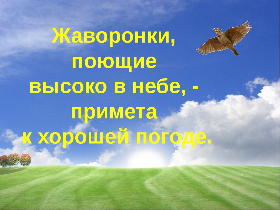 Жаворонки, поющие высоко в небе, - примета к хорошей погоде.
