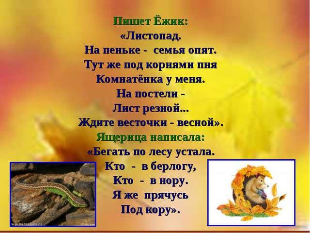 Пишет Ёжик: «Листопад. На пеньке - семья опят. Тут же под корнями пня Комнатё...