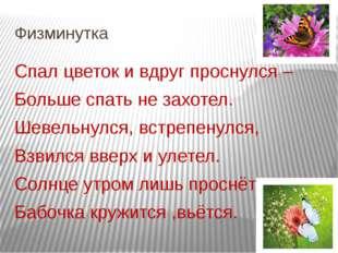 Физминутка Спал цветок и вдруг проснулся – Больше спать не захотел. Шевельнул