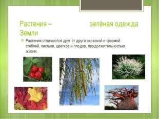 Растения – зелёная одежда Земли Растения отличаются друг от друга окраской и