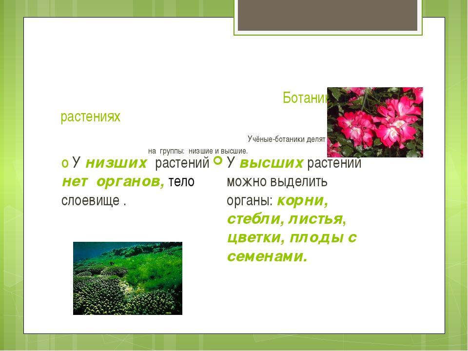 Ботаника – наука о растениях Учёные-ботаники делят царство растений на групп...