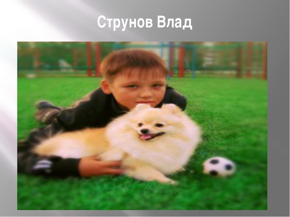 Струнов Влад