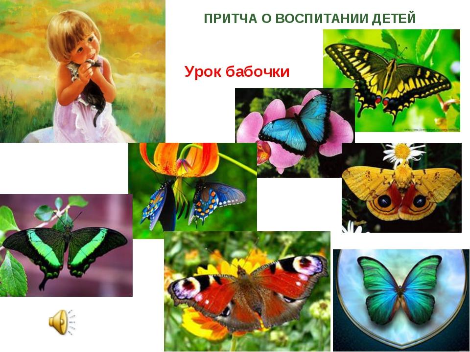 ПРИТЧА О ВОСПИТАНИИ ДЕТЕЙ Урок бабочки