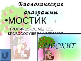 Биологические анаграммы МОСТИК → ТРОПИЧЕСКОЕ МЕЛКОЕ КРОВОСОСУЩЕЕ НАСЕКОМОЕ МО