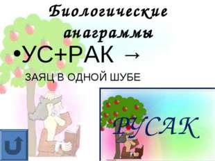Биологические анаграммы УС+РАК → ЗАЯЦ В ОДНОЙ ШУБЕ РУСАК
