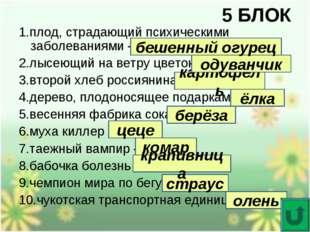 5 БЛОК 1.плод, страдающий психическими заболеваниями - 2.лысеющий на ветру цв