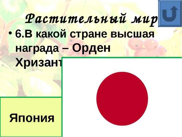 Растительный мир 6.В какой стране высшая награда – Орден Хризантемы? Япония