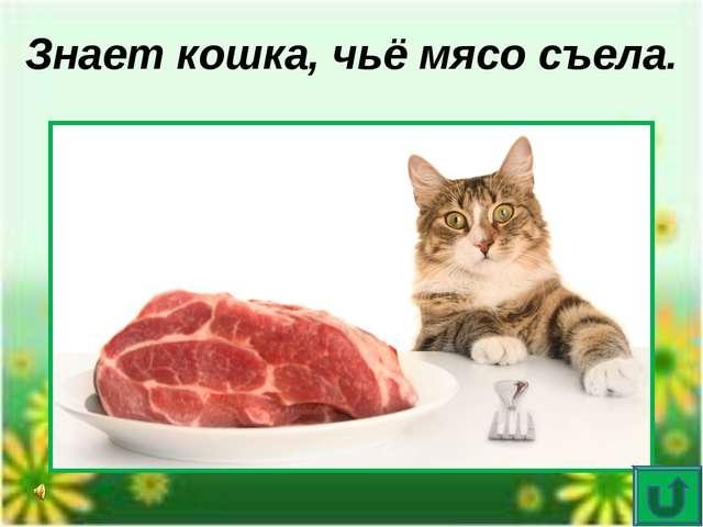 Опознай пословицу Домашнему млекопитающему доподлинно известен хозяин проглоч...