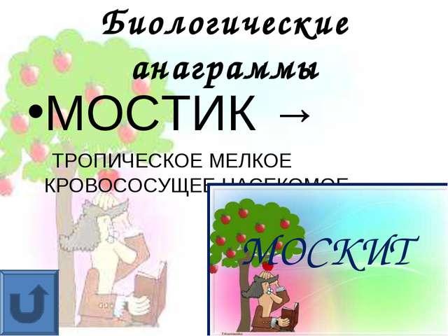 Биологические анаграммы МОСТИК → ТРОПИЧЕСКОЕ МЕЛКОЕ КРОВОСОСУЩЕЕ НАСЕКОМОЕ МО...