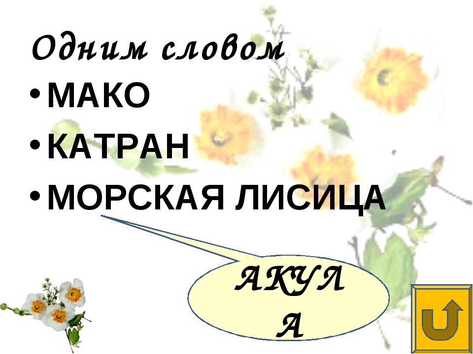 Одним словом МАКО КАТРАН МОРСКАЯ ЛИСИЦА АКУЛА