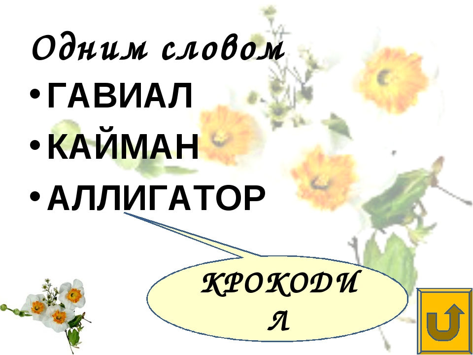 Одним словом ГАВИАЛ КАЙМАН АЛЛИГАТОР КРОКОДИЛ