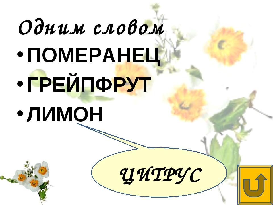 Одним словом ПОМЕРАНЕЦ ГРЕЙПФРУТ ЛИМОН ЦИТРУС