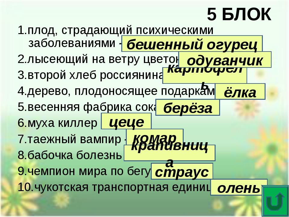 5 БЛОК 1.плод, страдающий психическими заболеваниями - 2.лысеющий на ветру цв...