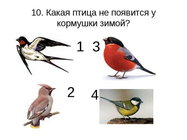 10. Какая птица не появится у кормушки зимой? 1 2 3 4