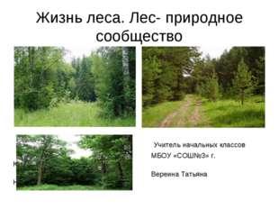 Жизнь леса. Лес- природное сообщество Учитель начальных классов МБОУ «СОШ№3»