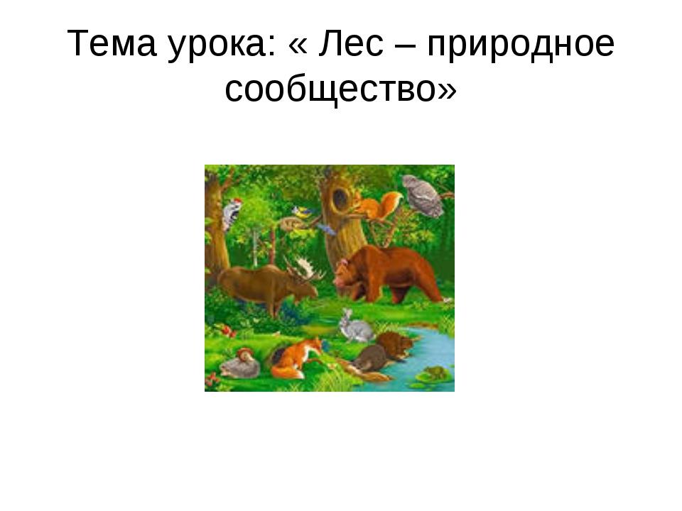 Тема урока: « Лес – природное сообщество»