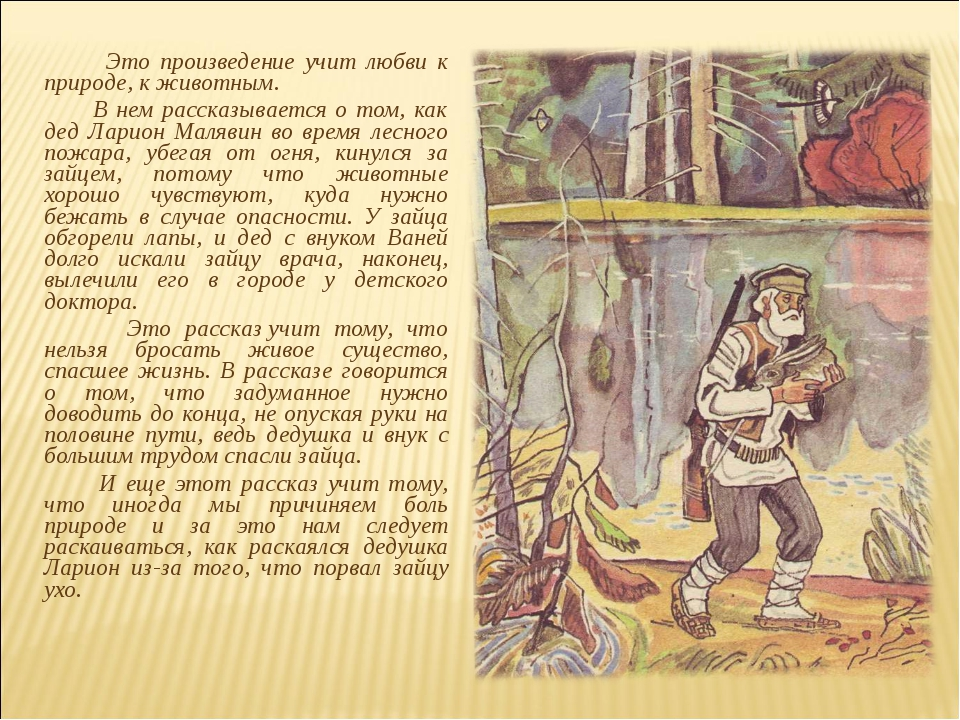 Рассуждение о природе по рассказам паустовского