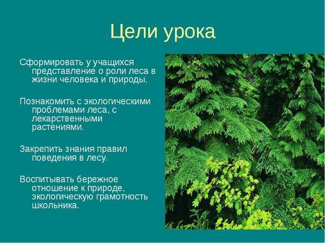Цели урока Сформировать у учащихся представление о роли леса в жизни человека...