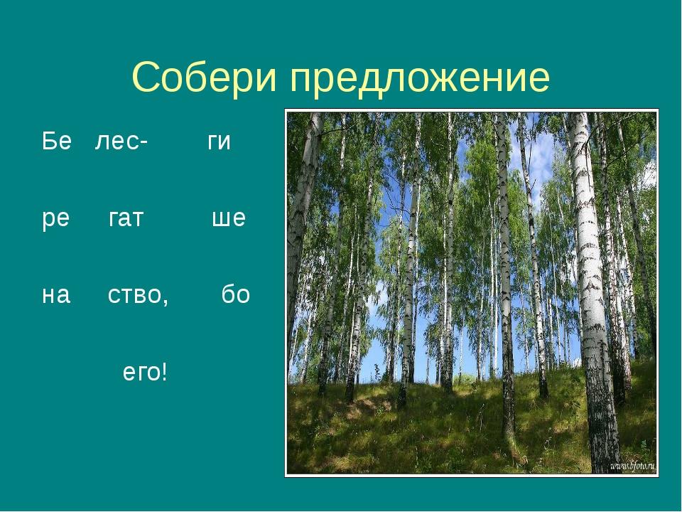 Собери предложение Бе лес- ги ре гат ше на ство, бо его!