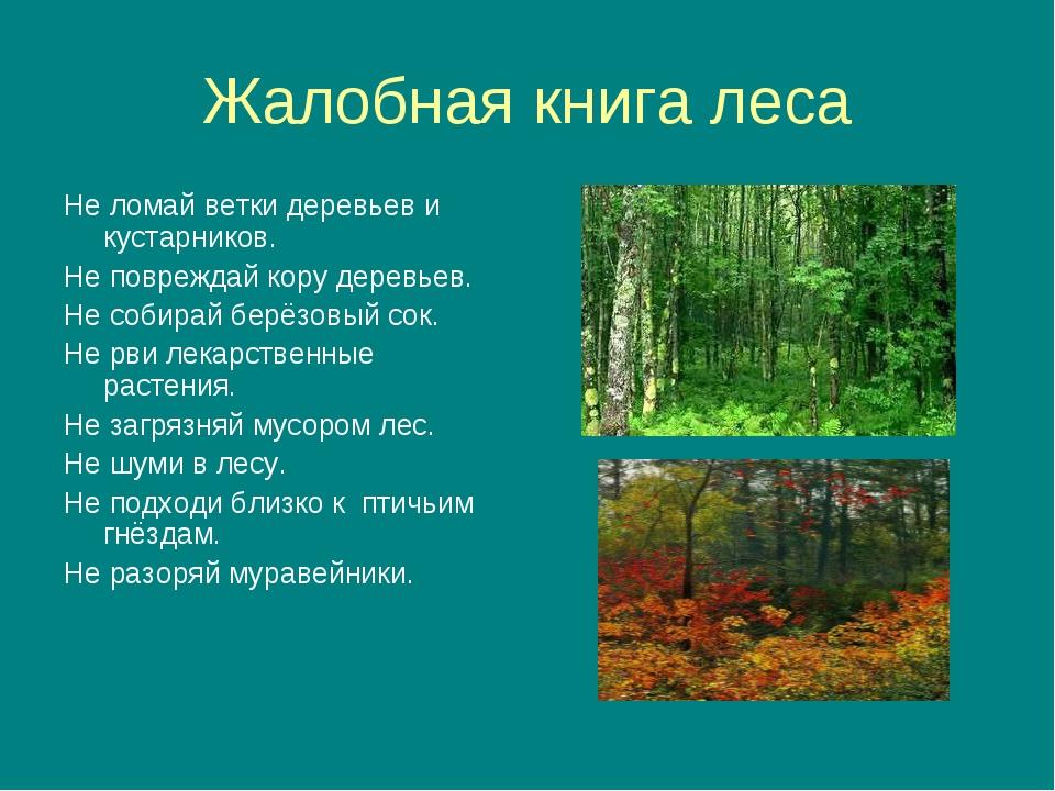 Жалобная книга леса Не ломай ветки деревьев и кустарников. Не повреждай кору...