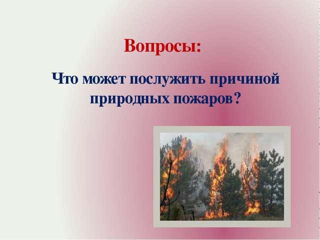 Вопросы: Что может послужить причиной природных пожаров?