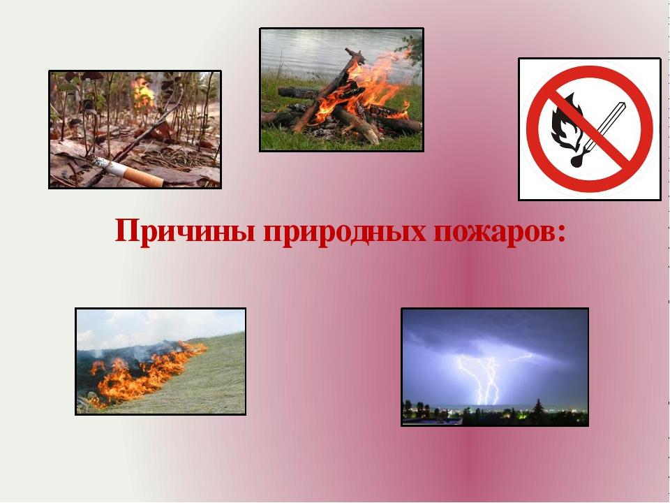 Причины природных пожаров: