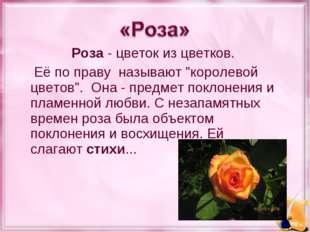 """Роза- цветок из цветков. Её по праву называют """"королевой цветов"""". Она- пре"""