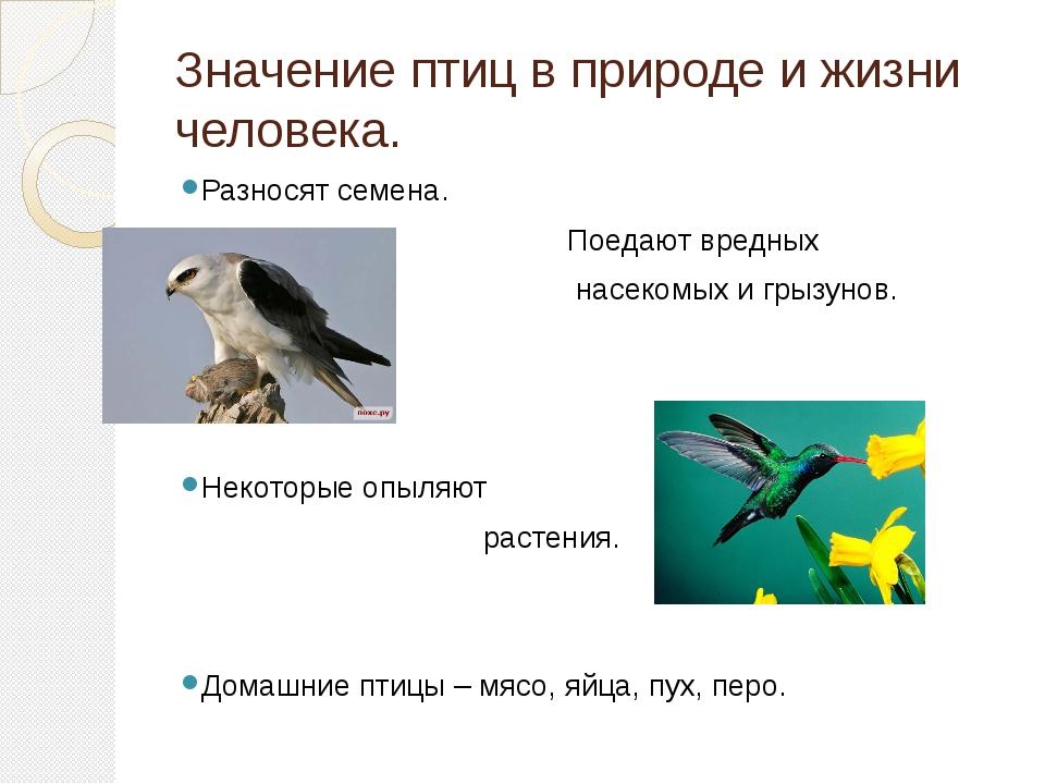 роль птиц в природе и для челтвека цены!Успевай!На