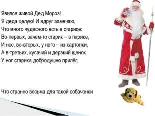 Явился живой Дед Мороз! Я деда целую! И вдруг замечаю, Что много чудесного ес
