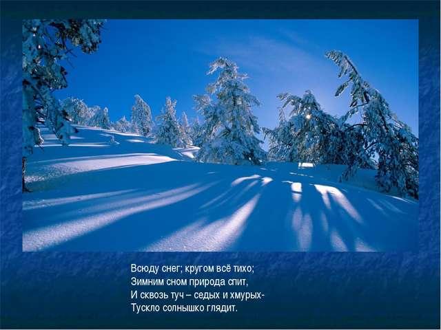 Всюду снег; кругом всё тихо; Зимним сном природа спит, И сквозь туч – седых и...