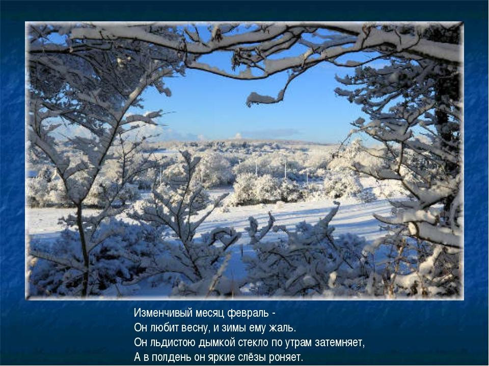 Изменчивый месяц февраль - Он любит весну, и зимы ему жаль. Он льдистою дымко...