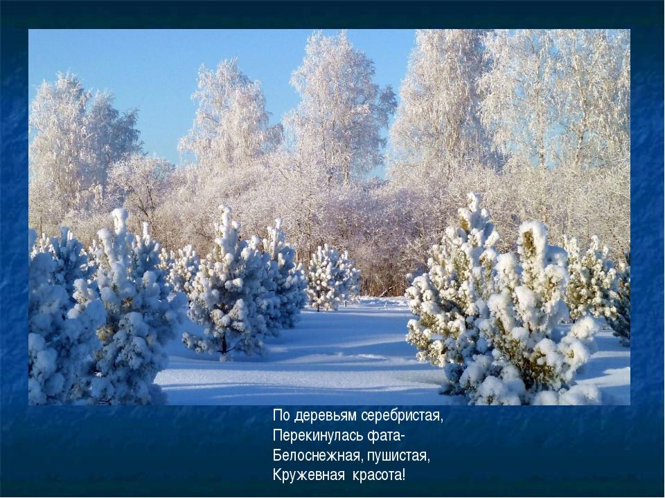 По деревьям серебристая, Перекинулась фата- Белоснежная, пушистая, Кружевная...